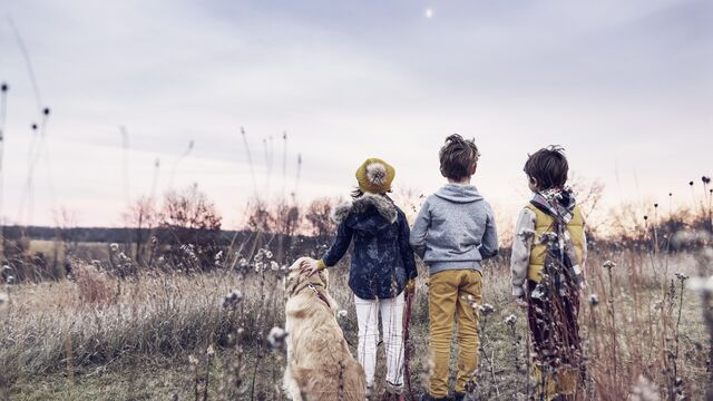 Three children in a field at sunset with their golden retriever dog - Small